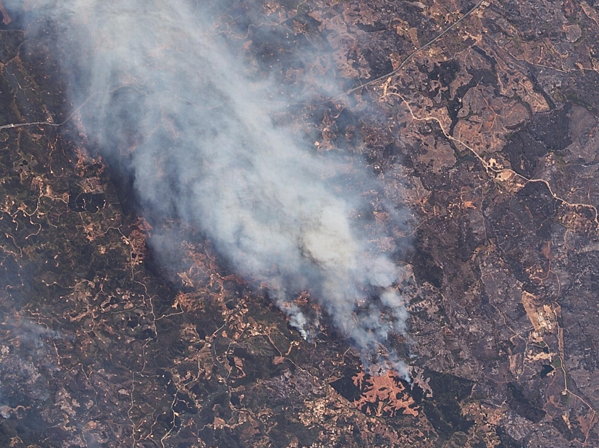 Şili Orman Yangınları 31 Ocak 2017